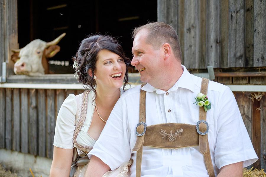 Hochzeit in Tracht, mit Kuh auf dem Bauernhof
